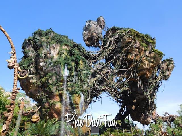 Pandora Flight of Passage