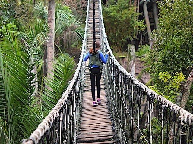 Rope_Bridge_Wild_Africa_Trek