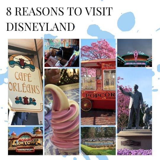 8 reasons to visit disneyland